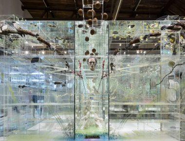 David Altmejd : rêve éveillé au MAM