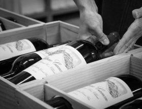 13 (très très) bonnes raisons de boire un (Château) Canon