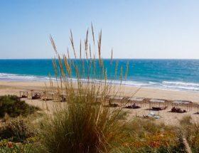 Tanger, douce décadence