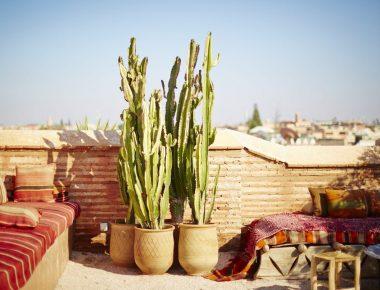 Pourquoi on veut bien retourner à Marrakech