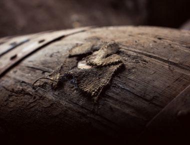 Balblair, l'Ecosse et le millésime : voyage immobile au pays du whisky