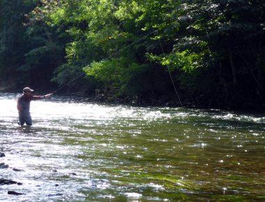 Tenkara : la philosophie japonaise du Ma, version pêche à la mouche