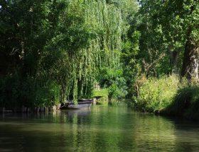 Poitou : voyage en terres (trop) méconnues