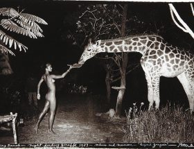Going wild, Peter Beard