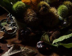 En Corse, une cuisine d'automne épineuse
