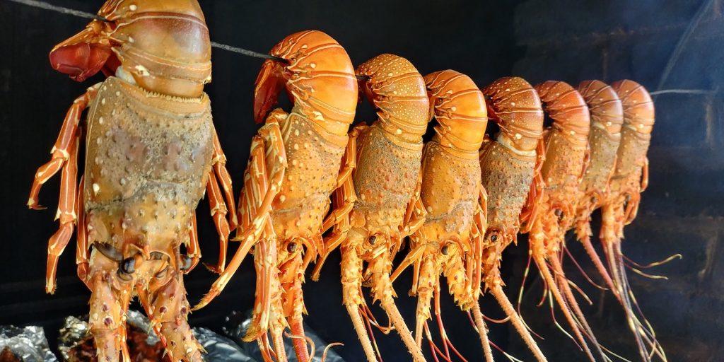 caraibes-lobster-3