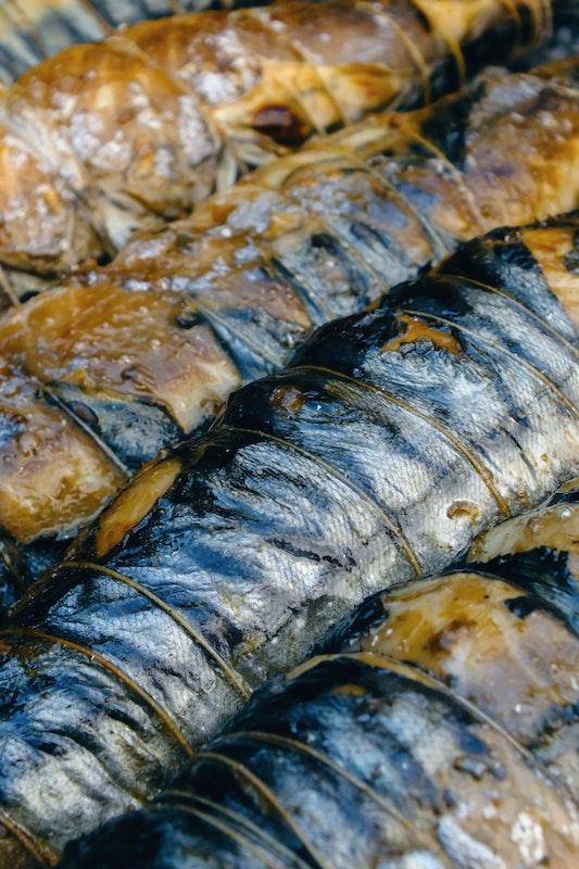 caraibes-poisson