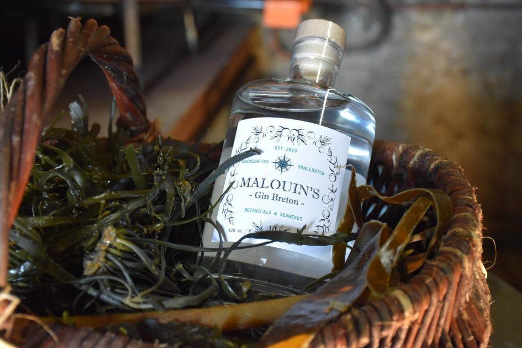 malouins-gin