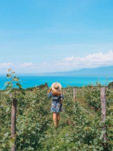 ocoa_bay_wine_les-hardis-copyright-the-lovely-escapist