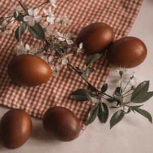 chocolat-les-hardis-3