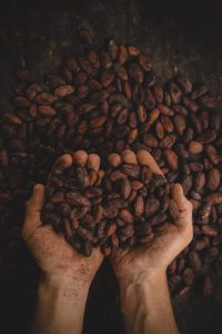 chocolat-les-hardis-4