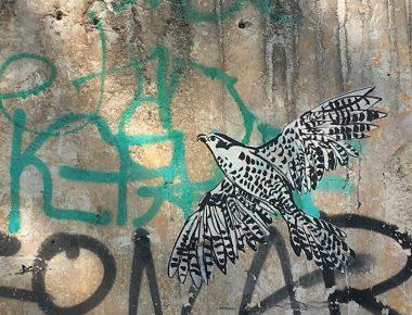 Flâner à Parisavec la street artist Maddía